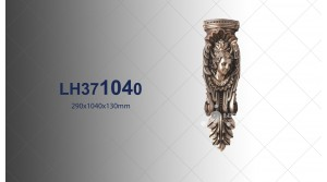 Fireplace PU LH371040